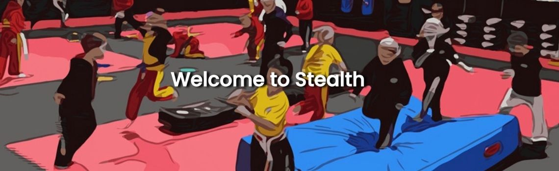 Junior Martial Arts Classes - Stealth UK